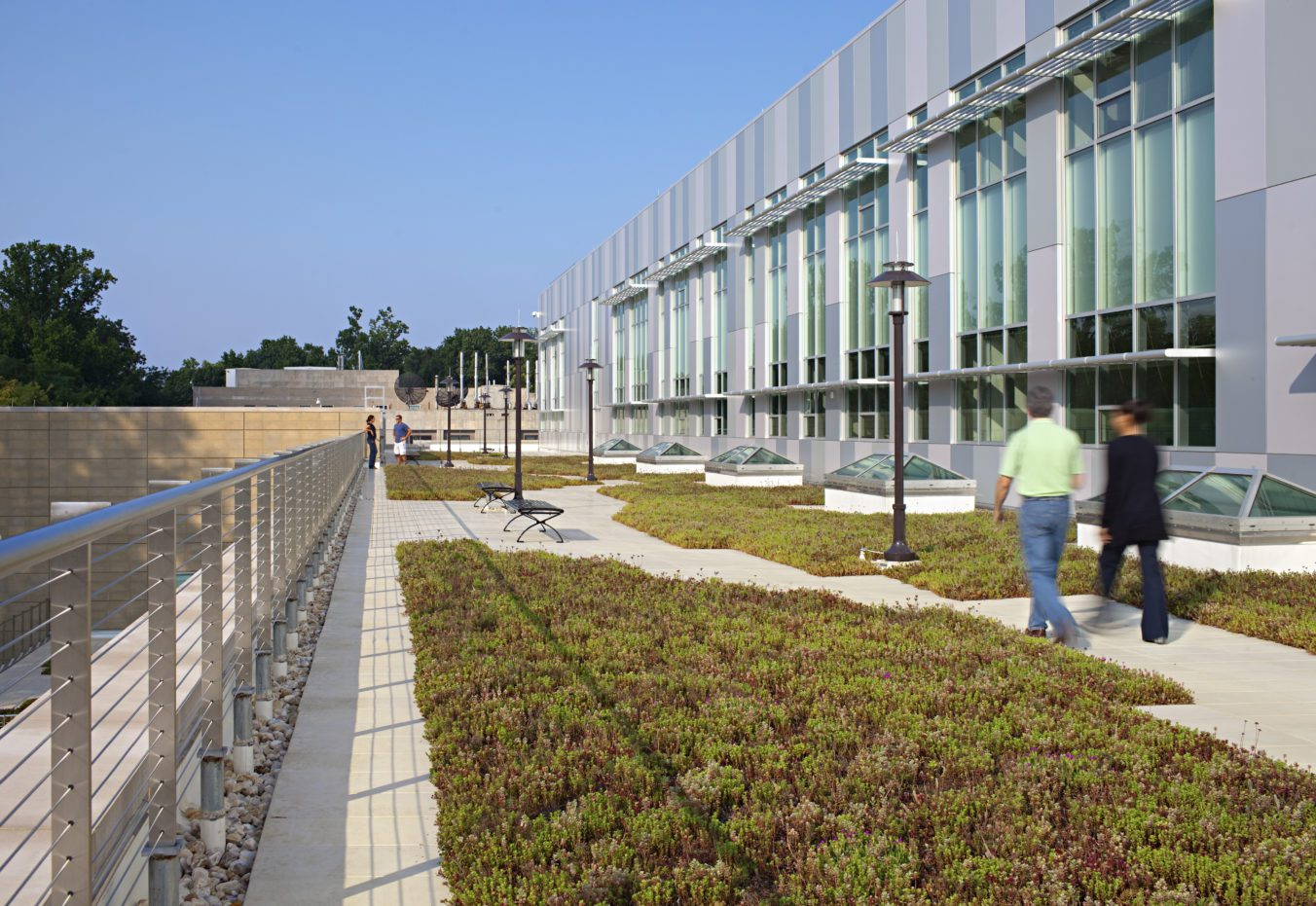 Morgan State University Center for Built Environment and Infrastructure Studies Greenroof